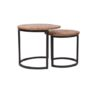 Salontafel Set Duo 50x50x45 cm